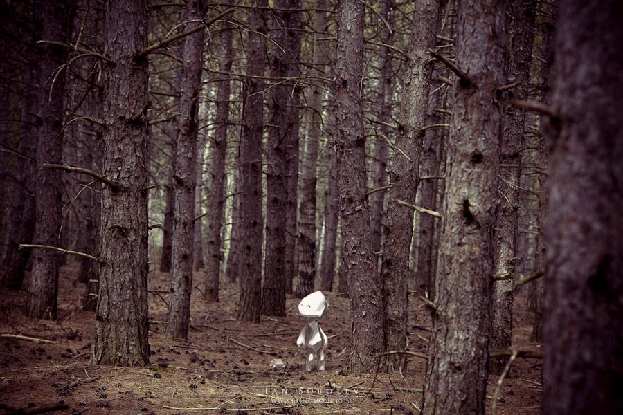 paper-trees